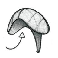 Schéma de la puissance du diaphragme à l'expiration